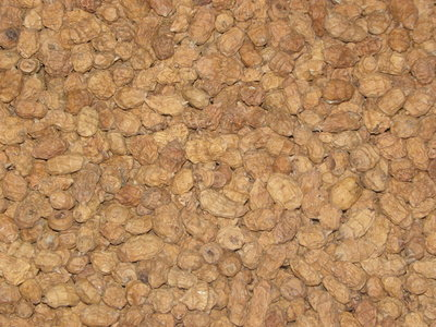 tijgernoten 7-20 mm